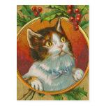 Chat vintage de Noël Cartes Postales
