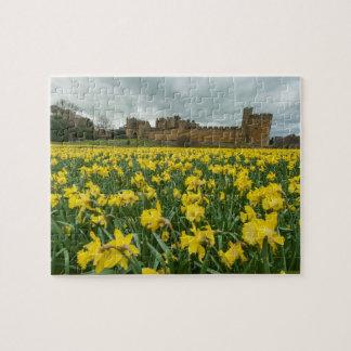 Château d'Alnwick, le Northumberland, R-U Puzzle