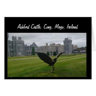 Château d'Ashford, Cong, Mayo Cartes