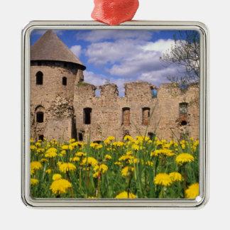 Château de Cesis de bordure de pissenlits au Ornement Carré Argenté
