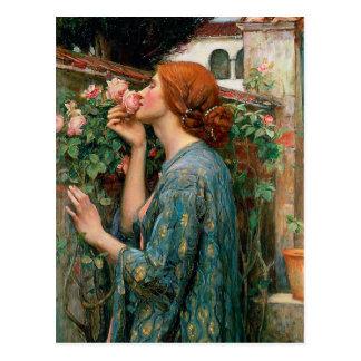 Château d'eau l'âme de la carte postale de rose