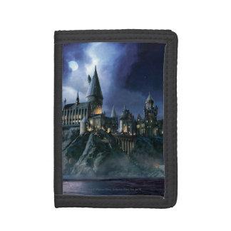 Château | Hogwarts éclairé par la lune de Harry