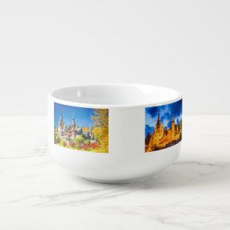 Château Sinaia de Peles de tasse de soupe