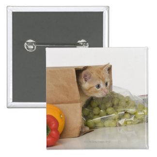 Chaton à l'intérieur de sac d'épicerie badge carré 5 cm
