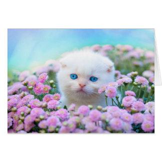 Chaton blanc et carte vierge de note de fleurs de
