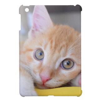 chaton coques iPad mini