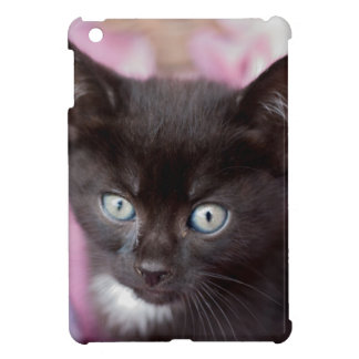 chaton coque pour iPad mini