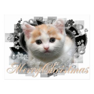 Chaton de Joyeux Noël - cartes postales de vacance