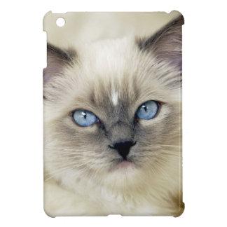 Chaton de Ragdoll Coque iPad Mini