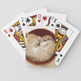 Chaton de sommeil dans la cuvette rouge simple sur cartes à jouer
