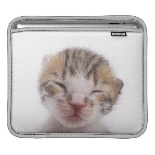 Chaton de sommeil poches iPad