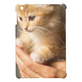 Chaton doux dans la bonne main étui iPad mini