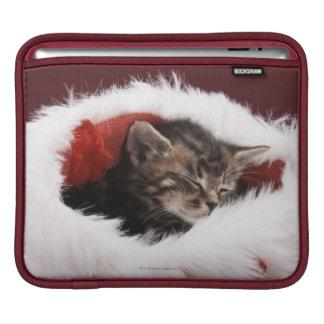 Chaton endormi dans le casquette de Noël Poches Pour iPad