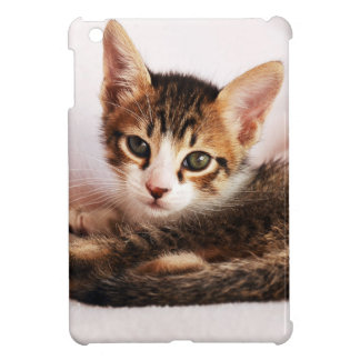 chaton étui iPad mini