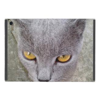 Chaton mignon coque iPad mini