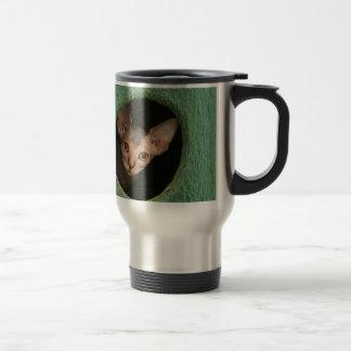 Chaton mignon de sphynx mug de voyage