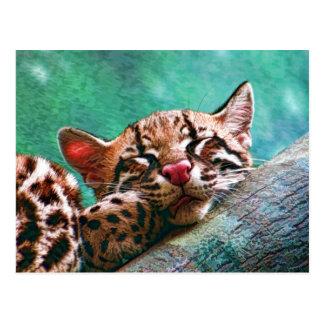 Chaton mignon d'Ocelot de bébé de sommeil Carte Postale