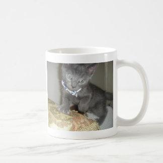 Chaton Mug