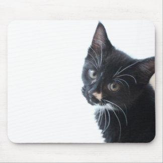 Chaton noir et blanc tapis de souris