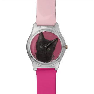 Chaton noir portant le collier orné de bijoux montres