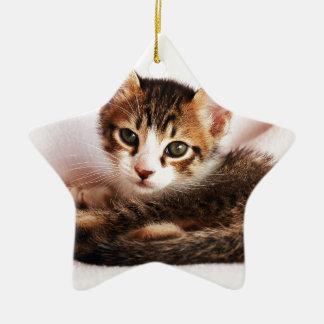 chaton ornement étoile en céramique
