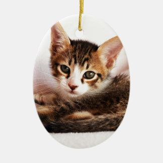 chaton ornement ovale en céramique