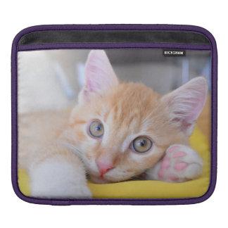 chaton poches pour iPad