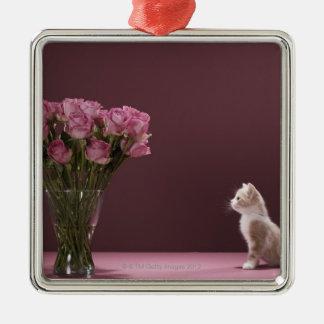 Chaton regardant le vase de roses ornement carré argenté