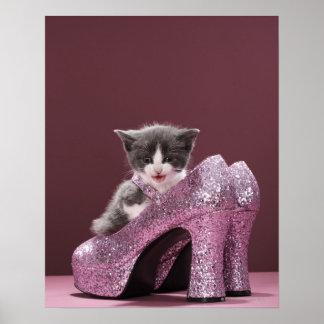 Chaton se reposant dans des chaussures de affiches