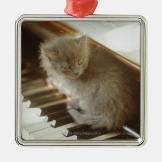Chaton se reposant sur le clavier de piano, plan ornement carré argenté