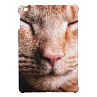 Chaton somnolent étuis iPad mini