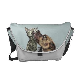 Chaton tigré obtenant un baiser de pitbull sacoches