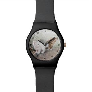 Chatons chinois de l'art deux de chat montres