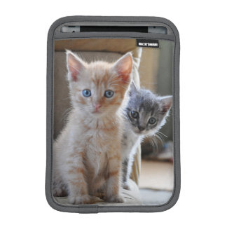 Chatons curieux housse iPad mini