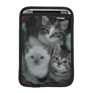 Chatons dans un panier housses pour iPad mini