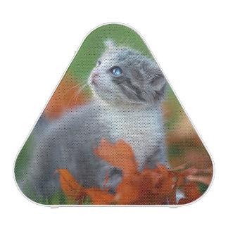Chatons mignons de bébé jouant dehors dans l'herbe haut-parleur bluetooth