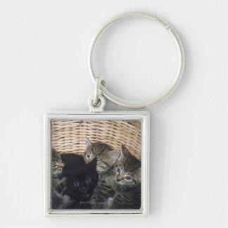 chatons porte-clé carré argenté