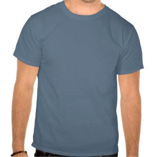 Chats colorés de bande de hanche fraîche t-shirts