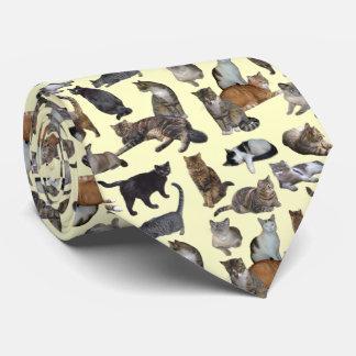 Chats Cravate Customisée