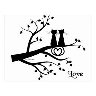 Chats dans l'amour carte postale