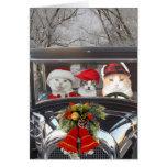 Chats de Noël dans la voiture Cartes De Vœux
