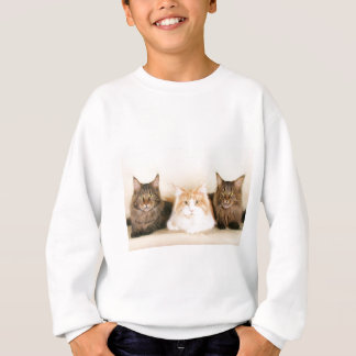 Chats de ragondin du Maine Sweatshirt