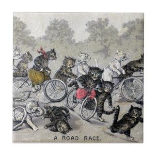 Chats d'équitation de bicyclette petit carreau carré