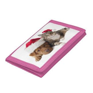 Chats et chiens - chat de Noël - chien de Noël