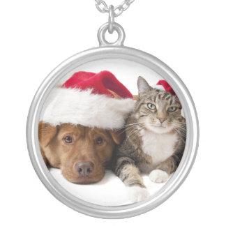 Chats et chiens - chat de Noël - chien de Noël Collier
