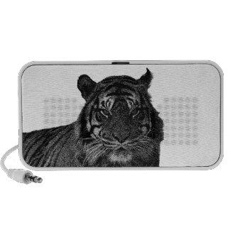 Chats sauvages d'espèce menacée de tigre noirs et  haut-parleur portable