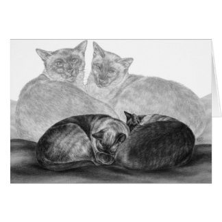 Chats siamois dessinant par le cygne de Kelli Cartes