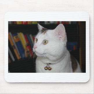 chats tapis de souris