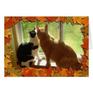 Chats tigrés oranges d'automne cartes