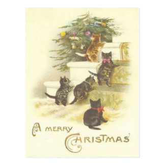 Chats vintages sur la carte postale de Joyeux Noël
